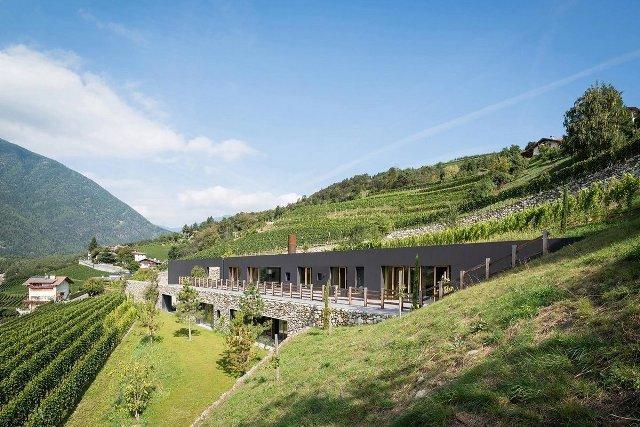 Villa-vinogradnik1