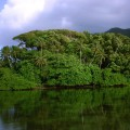 ostrov-kosrae_37